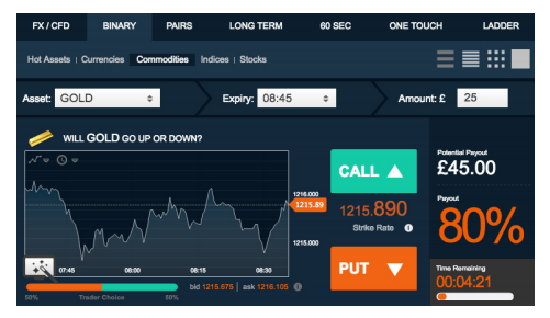 Hedgestone Group Binary Options