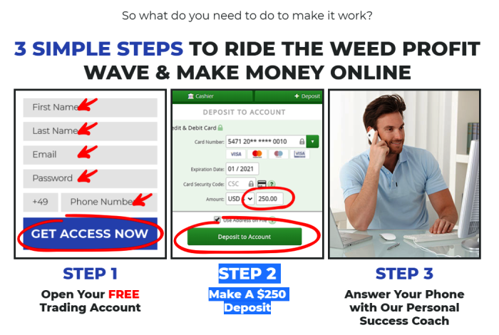 Investing With The Weed Profit System